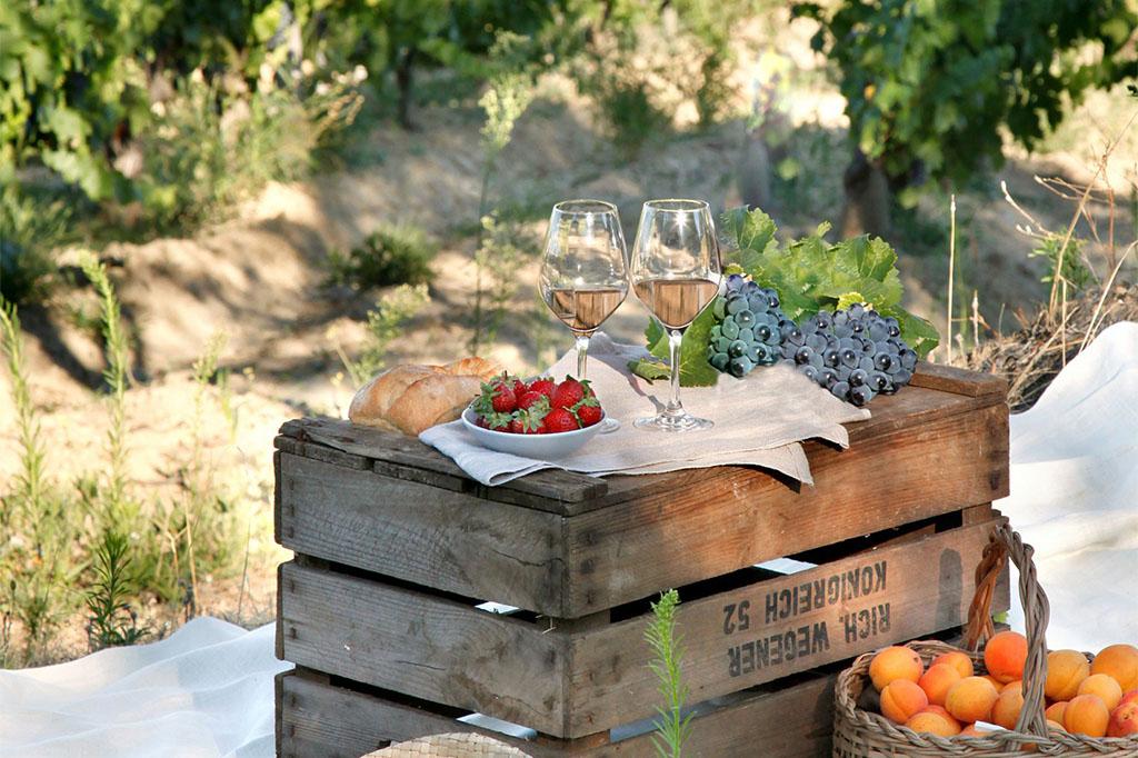 summer picnic in vineyard